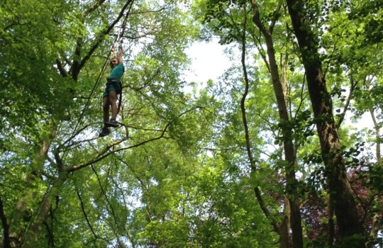 death ride accrobranche arbres