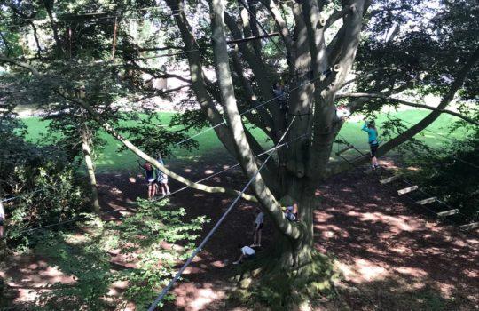 parcours accrobranche cordes câbles arbres aventure